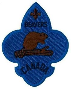 Beaver Scouts, Some Games, Beavers, Scouting, Buckets, Badges, Safety, September, Park