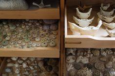 cabinet of curiosities, kay sekimachi's studio photographed by leslie williamson