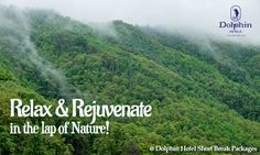 Stay in Dolphin Hotel & Experience the most exhilarating vacation in the lap of Nature.