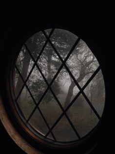 Autumn Aesthetic, Witch Aesthetic, Cozy Aesthetic, Gothic Aesthetic, Aesthetic Beauty, Hogwarts, Art Ancien, Slytherin Aesthetic, Dark Paradise