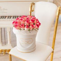 Pink Roses Premium