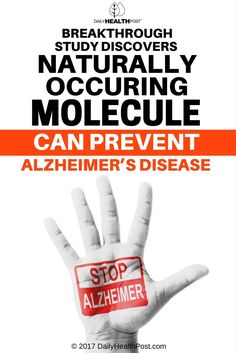 New Study Shows Molecule That Can Prevent Alzheimers Disease