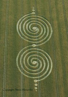 Crop Circle  -  Contact