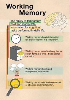 People with ADHD can have a weakness with working memory. Learn more about working memory here. Learning Tips, Brain Based Learning, Educational Psychology, School Psychology, Memory Psychology, Cognitive Psychology, Ap Psychology, Speech Language Pathology, Speech And Language