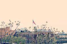 New York | High Line Park