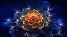 Download hd wallpapers of 163405-fractal, Abstract, Fractal Flowers. Free…
