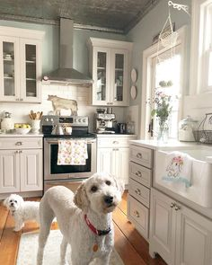 There's too many things to love about farmhouse kitchen. Her pups are just the sprinkles on the cake! Home Decor Inspiration, Beautiful Kitchens, House, Home, Kitchen Remodel, Kitchen Decor, Kitchen Redo, Home Kitchens, Farmhouse Kitchen