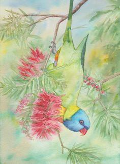 Dangling Rainbow Lorikeet (Watercolour)