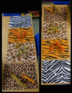 "Go Wild! - Stimulating Learning Wild Animal Pattern Matching (from Stimulating Learning with Rachel)<br> Simple activities linked with wild animals in the early years classroom from Rachel ("",) Dear Zoo Activities, Eyfs Activities, Animal Activities, Animal Crafts, Zoo Crafts, Rainforest Activities, Dear Zoo Eyfs, Motifs Animal, Jungle Animals"