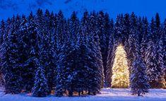 Navidad: claves para una buena redacción…