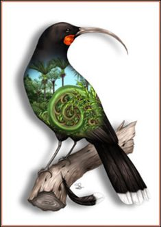 NZ Artist Sophie Blokker's Huia limited edition print from her native NZ birds range. Nz Art, Art For Art Sake, Art Maori, Tui Bird, Maori Symbols, Maori Patterns, Zealand Tattoo, Polynesian Art, Maori Designs