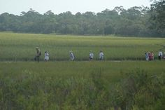 Barrier Island School Field Trip