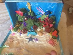 Coral reef ocean biome diorama science project science coral reef diorama sciox Image collections