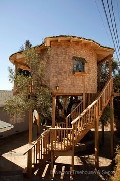 Treehouse Masters Irish Cottage treehouse masters, irish cottage, huntington beach, ca | image