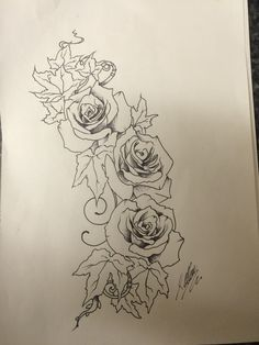 Roses and ivy pen sketch for tattoo design I did by Travis Allen at twisted tattoo Www Ivy Tattoo, Rose Tattoos, Back Tattoo, Rose Drawing Simple, Lowrider Tattoo, Tattoo Trends, Tattoo Ideas, Chicano Tattoos, Latest Tattoos