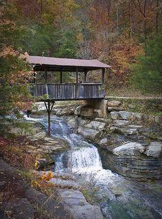 Covered Bridge in Arkansas by snolic...linda, via Flickr
