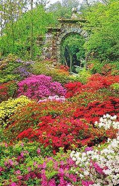 Bodnant Gardens UK
