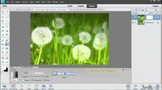 Photoshop Elements tutorial: Blending images with layer masks | lynda.com