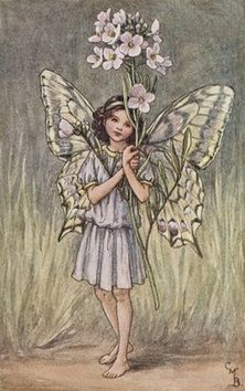 Cicely Mary Barker | The Lady's Smock Fairy
