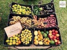 São produtos certificados e vindos da agricultura familiar. (foto: divulgação)