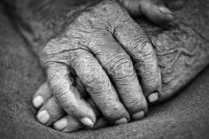 old woman hands stock photo © (yurok) (#1536173)   Stockfresh