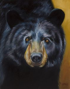 This painting is a black bear looking straight at the viewer. Teddy Bear Cartoon, Bear Paintings, Bear Pictures, Animal Pictures, Bear Tattoos, Bear Drawing, Rock Painting Designs, Pet Rocks, Bear Art