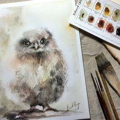 ORIGINAL Watercolor Painting Owl Painting Owl by CanotStop on Etsy