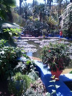 Beautiful cobalt blue accents in the Majorelle Gardens in Marrkech, Morocco