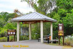 A visit to Brooker Creek Preserve in Tarpon Springs, Florida.