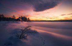 A Token of Life by Ole Henrik Skjelstad on 500px   Norway