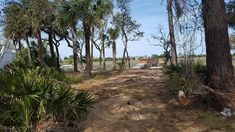 Harbor Island SC Tidal Creek home site with panoramic views of the ocean and Hunting Island State Park!  Complete with dock and the island has great amenities!  Enjoy beach life 24/7 in this private, gated community.
