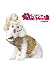 Pup A Razzi Pop Queen Dog Costume Large  Gold
