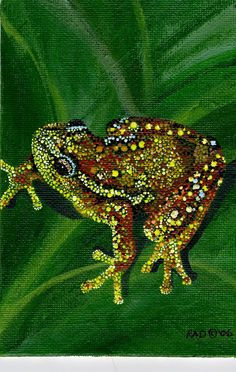 Spotted Reed Frog, acrylic dot painting