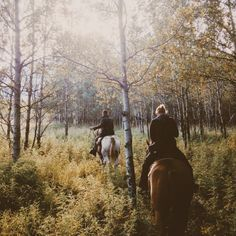 YES YES YES! Like actually this is the thing I want to do the most... horseback riding. camping. woods. <3