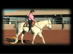 How to Read Your Horse: Quick Tip with Julie Goodnight for CHA