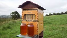 HOMENEWSThe Hive That Could Revolutionize Beekeeping For Beginners Dreaming of backyard bees to help save the dying population—but don't want to get stung? There's a tool for that. #beekeepingforbeginners #backyardbeekeeper