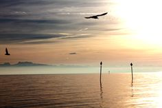 Lake of Constance, Germany <3