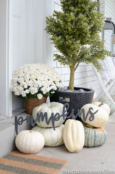 Pumpkins saying for Halloween front porch
