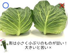 Japanese Food, Vegetable Garden, Life Hacks, Cabbage, Food And Drink, Vegetables, Cooking, Gardening, Foods