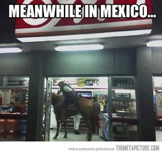 Mexican Shopper. It's sad to say I could see this happening where I live:/ @KaylaBillings