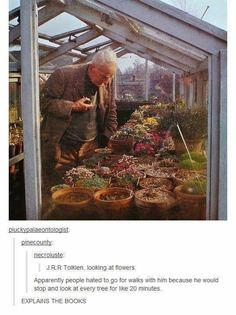 "Tolkien-Related Memes For Lord Of The Rings Junkies Nerdy Memes) - Funny memes that ""GET IT"" and want you to too. Get the latest funniest memes and keep up what is going on in the meme-o-sphere. Fandoms, Das Silmarillion, J. R. R. Tolkien, Tolkien Quotes, O Hobbit, Into The West, Legolas, Narnia, Middle Earth"