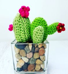 Fun and Easy Crochet Cacti. Get the free written pattern at:http://allcraftschannel.com/2016/08/easy-crochet-cactus-home-decor.html If you prefer to watch a video tutorial click here:https://www.youtube.com/watch?v=ehj3K6ydaNk