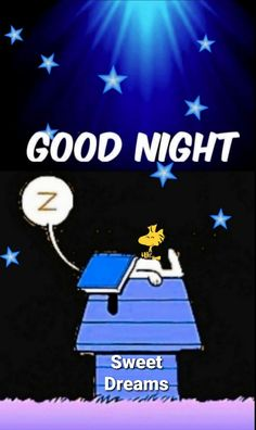 Good Night Thoughts, Good Night Sweet Dreams, Good Morning Good Night, Good Night Messages, Good Night Quotes, Snoopy Love, Snoopy And Woodstock, Sweet Dreams Images, Good Night Prayer