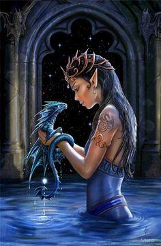 Fairies&Dragons