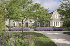 The simplicity and effectiveness of repetition; the lupins and the lavender.  I love the fact that the soft curve of the driveway stops away from the house with a stone wall and steps up to guide you in.   Fantastic landscape design.  Fantastic architecture as well...  Nantucket, Massachusetts | Ferguson & Shamamian
