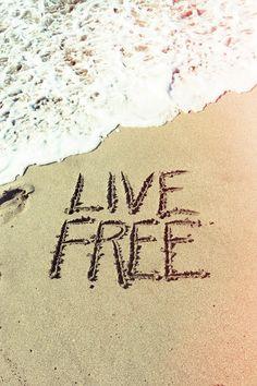 Live Free Karma Bracelet, Live Free, Word Art, Spring Break, Iphone Wallpapers, Free Spirit, Inspiration, Summer Vibes, Quotes