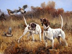 """""""Up Close and Personal"""" 30 x 40 Oil Quail Hunting, Hunting Art, Hunting Dogs, Hunting Birds, Hunting Painting, Wildlife Paintings, Dog Paintings, Wildlife Art, Pointer Puppies"""