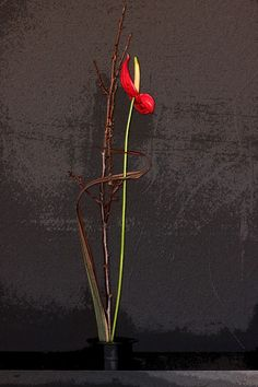 """""""Ikebana Can Be Your Friend,"""" Twisted Stem-Edgy & Elegant Floral Design, Co."""