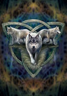 - Wolf Trio Card Anne Stokes Eastern Promise Cards at Enchanted Jewelry & Gifts Tier Wallpaper, Wolf Wallpaper, Animal Wallpaper, Anne Stokes, Fantasy Wolf, Fantasy Art, Wolf Artwork, Wolf Spirit Animal, Wolf Pictures