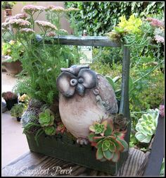 design/photo: Cindy Davison of The Succulent Perch